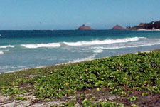 kailua oahu hawaii vacation rental near the beach