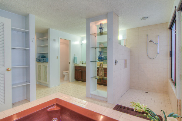 Master bathroom with jacuzzi spa