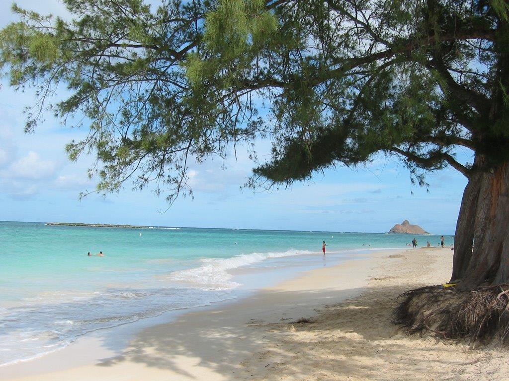 A Walk To The Beach 4 Bedroom 3 Bath House Plus Cottage Al